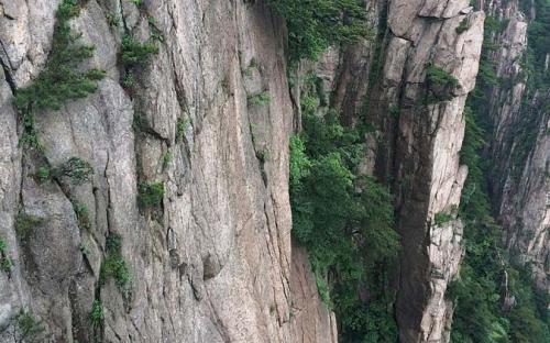 A steep cliff at Huangshan (CC BY-SA 4.0)