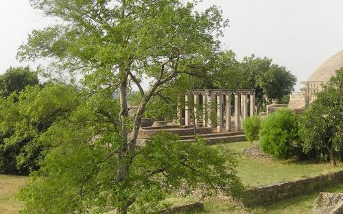 Panoramic view of Sanchi: Monastery 36, Temple 18, Stupa 1, shelter with fragments of Pillar 10 (CC BY-SA 3.0)