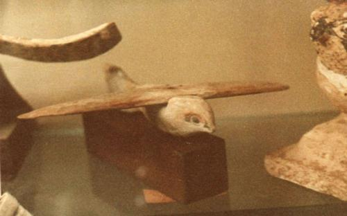 The Saqqara Bird is a bird-shaped artifact made of sycamore wood, discovered during the 1898 excavation of the Pa-di-Imen tomb in Saqqara, Egypt. (Source: Wikipedia)