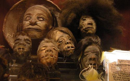 """Shrunken heads in the permanent collection of """"Ye Olde Curiosity Shop"""", Seattle, Washington state, U.S. (Image: Wikipedia)"""