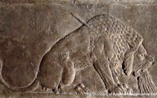 The Dying Lion – one of the most famous of the gypsum wall reliefs in Ashurbanipal's palace at Nineveh