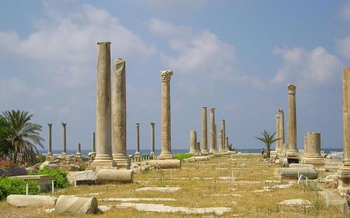 Main colonnaded street at Al Mina excavation site. (CC BY-SA 2.5)