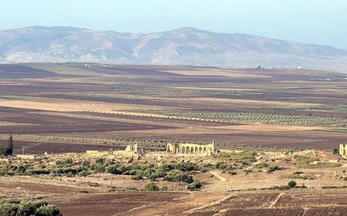 Panoramic view of Volubilis (CC BY-SA 2.0)