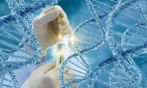 Testing of DNA molecules