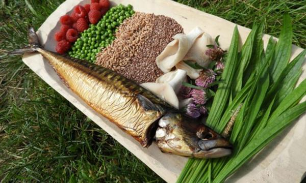 A selection of possible food in a Neolithic diet in the Iron Gates region, where people were still more reliant on aquatic resources.