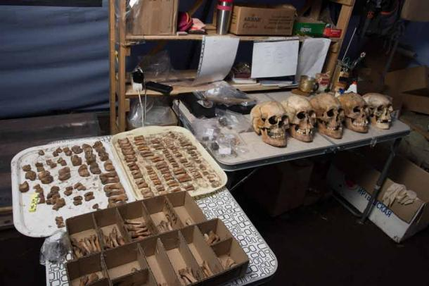 The remains of ancient Scythian warriors found at the Arzhan site in Russia will be used for the DNA cloning project. (Russian Geographical Society)