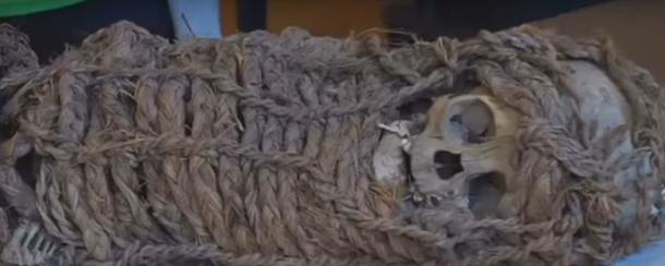 2,000-year-old mummy taken to Driscoll Children's Hospital for X-rays
