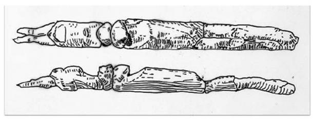 22,000-year-old double headed Androgynous sculpture Gargarion, Ukraine. Source, Joannes Richter, The Sky God Dyaeus.