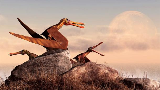 A trio of 3D-imaged pterosaurs as we have imagined them since we first knew they existed. No feathers here! (Daniel / Adobe Stock)