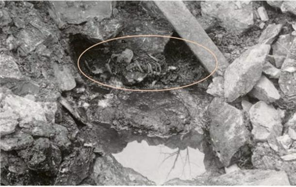 800-year-old body found in Norwegian well supports accuracy of Sverris Saga