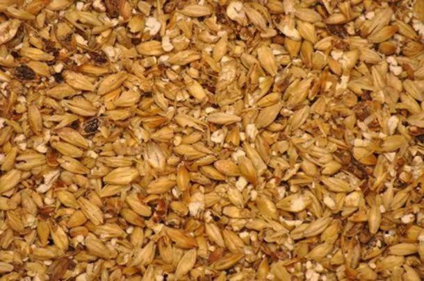 A blend of milled malted barley for beer brewing. (CC BY SA 3.0)
