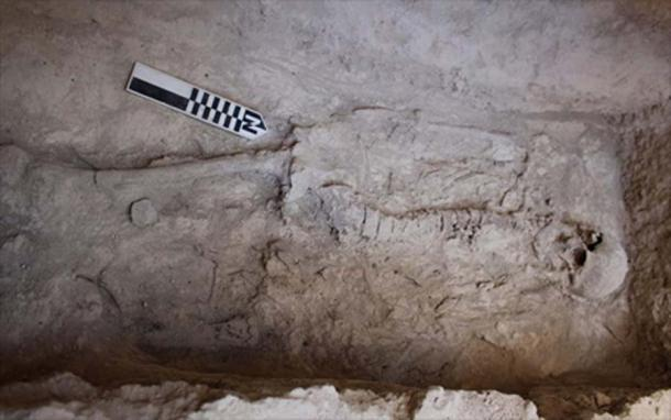 A burial found in a chamber at Aidonia. Credit: Ministry of Culture and Sports