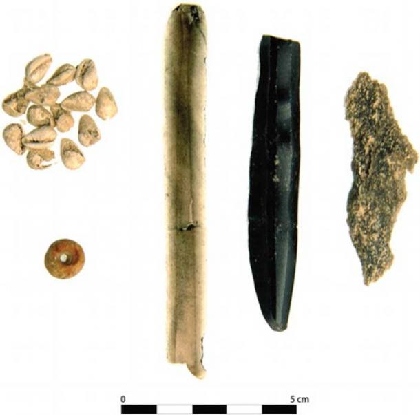 A ceramic bead, shell beads, and two obsidian artifacts found in one of the burials.