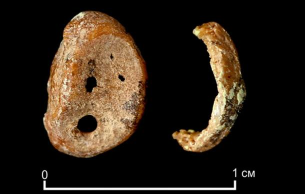 A finger bone fragment of 'X woman', a juvenile female, found in Denisova cave in 2008. (Max Planck Institute)