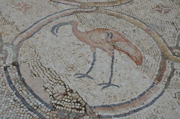 A flamingo, detail from the 6th century AD Bird Mosaic that adorned the atrium of a large palace complex outside the city wall of Byzantine Caesarea, Caesarea Maritima, Israel. (Butko / Public Domain)
