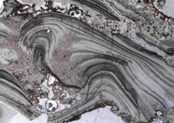 A microscopic image of geyserite textures from the ancient Dresser Formation in the Pilbara Craton in Western Australia. This shows that surface hot spring deposits once existed there 3.48 billion years ago. (UNSW)