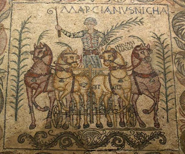 A mosaic showing a charioteer and horses from Emerita Augusta