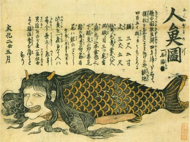 A ningyo with the body of a fish and head of a human.