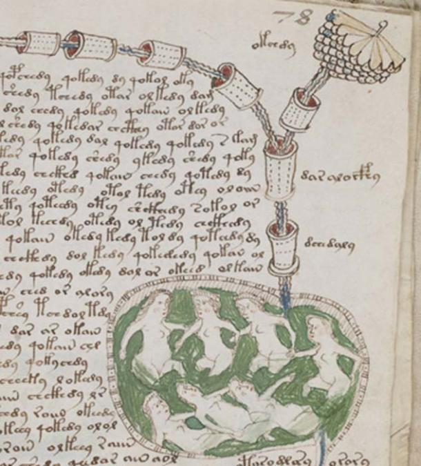 A page of illustrations and text from the mysterious Voynich manuscript. (Public Domain)