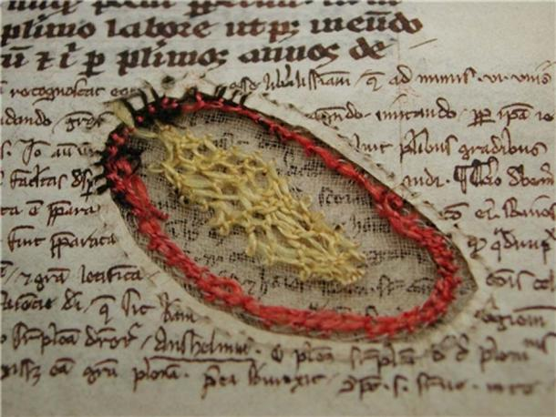 A parchment hole in a manuscript which was repaired using embroidery. Circa 1417. It is currently in University Library, Uppsala, Sweden.