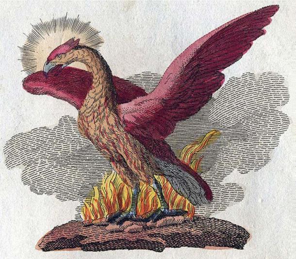 A phoenix in Friedrich Justin Bertuch's, 'Bilderbuch für Kinder', 1790-1830. (Public Domain)