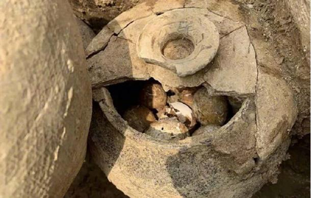 A pot of eggs was found in a tomb in Shangyang Village, Liyang, China. (jschina.com.cn)