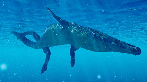 A recent sighting of the Ayia Napa Sea Monster described it as a crocodile-like creature. (Kaulitzki / Adobe)
