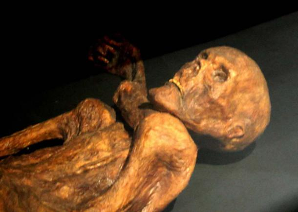 A reconstruction of Ötzi mummy as shown in Prehistory Museum of Quinson, Alpes-de-Haute-Provence, France. (CC BY-SA 3.0)