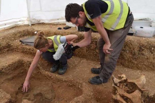 A shield that is part of the chariot burial with two horses emerges. (Alex Wood /Yorkshire Post)