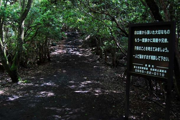 A sign pleads with visitors not to consider suicide as they enter the forest.