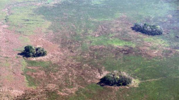 Aerial view of forest islands in the Amazonian region of Bolivia. (Umberto Lombardo)