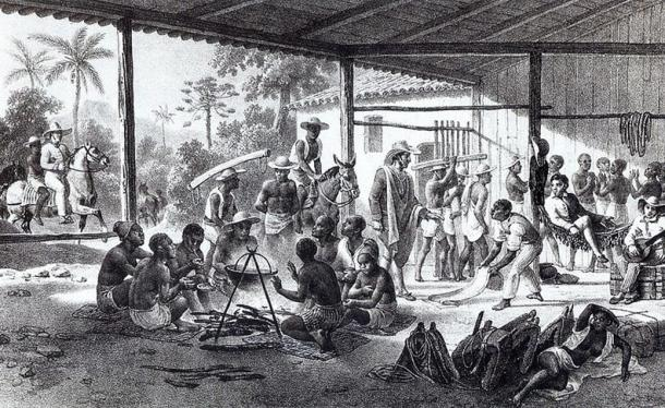 Illustration of African slaves recently brought to Brazil. (1830) By Johann Moritz Rugendas.