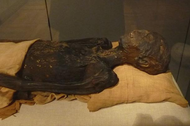 Princess Ahmose's mummy. Turin, Museo Egizio.