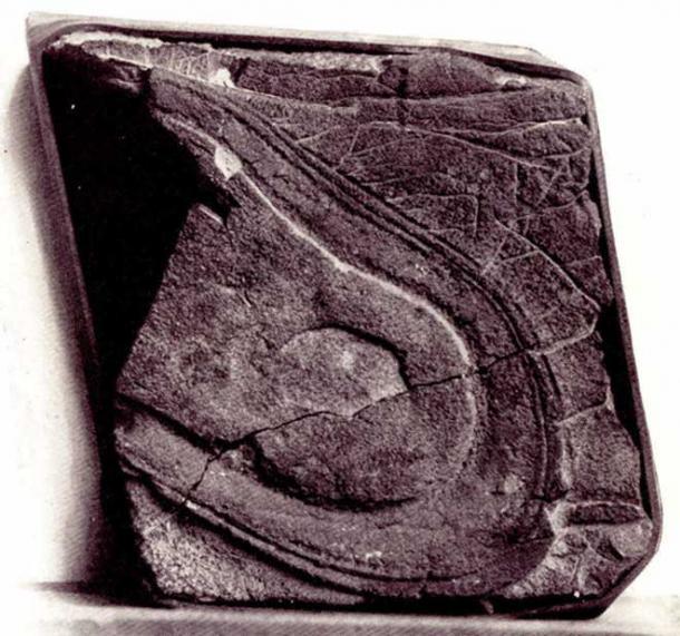 Alleged Nevada shoe print from God--Or Gorilla McCann, 1925.