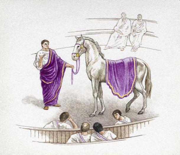 Although Caligula remarked that he would make his horse Incitatus a consul he never followed through with it.