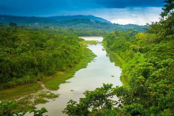 Amazon River, Amazon. (Grispb / Adobe)
