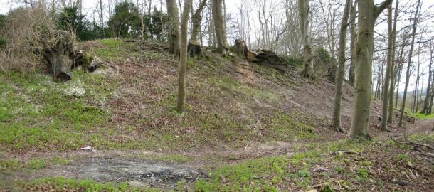 Amesbury, Wiltshire North bank of Blick Mead (Vespasian's Camp).