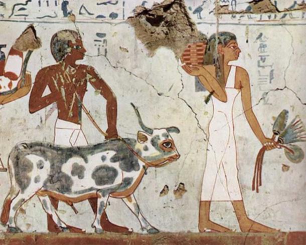 An ancient Egyptian woman and man circa 1500-1450 BC. (Public Domain)