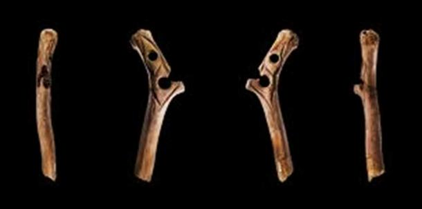 An example of a Magdalenian era bâton percé found in France.