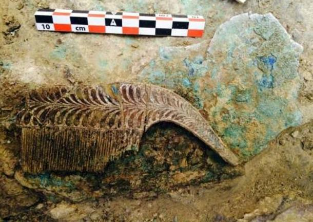 3,500-Year-Old Unplundered Warrior Tomb with Huge Treasure Hoard