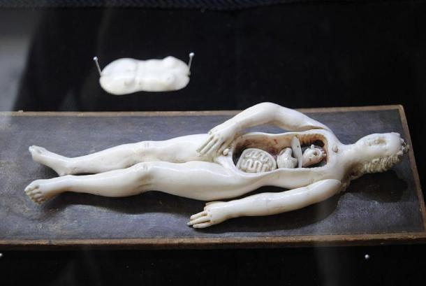 Anatomical manikin, ivory, 17th century. (Torana/CC BY SA 3.0)