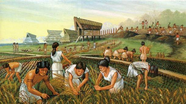 Ancient farmers. (Heritage of Japan)