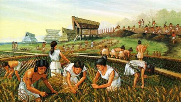 Ancient farmers. (Image: Heritage of Japan )