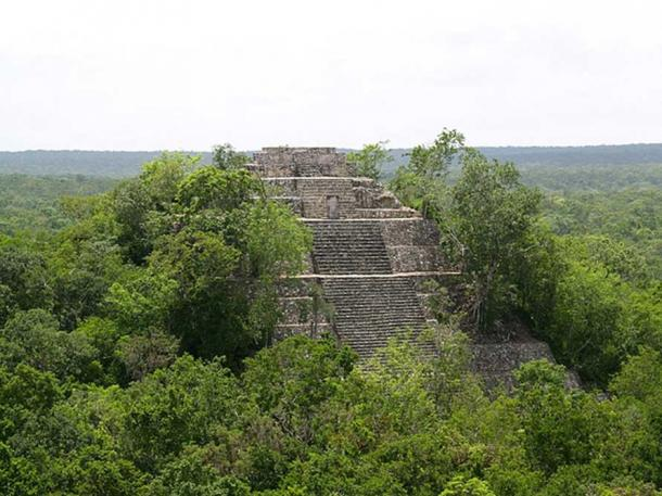 Ancient temple in the jungle, Calakmul. (CC BY SA 3.0)