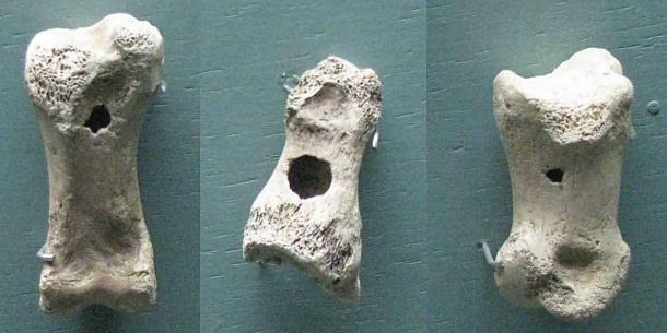 Anciens sifflets jouets fabriqués à partir d'os de rennes de Finlande datant d'environ 15 000 ans. (Don Hitchcock / CC BY-SA 4.0)
