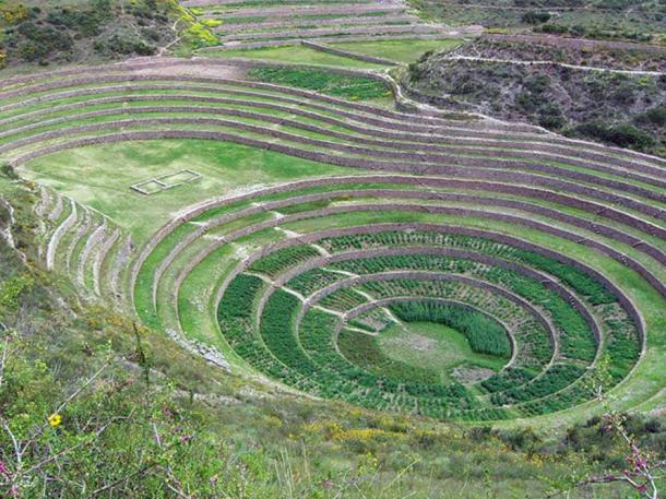 Andenes at Moray, Peru.