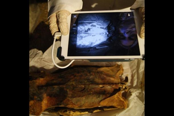 Anthropologist Ghada Darwish Al-Khafif uses infrared imaging to examine tattoos on the mummy's back.