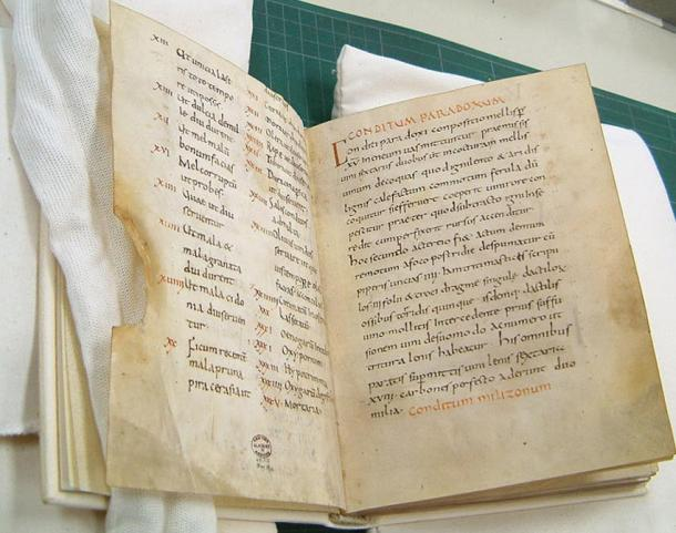 A copy of the Apicius Manuscript from the Monastery of Fulda, Germany and dated to 900 AD.