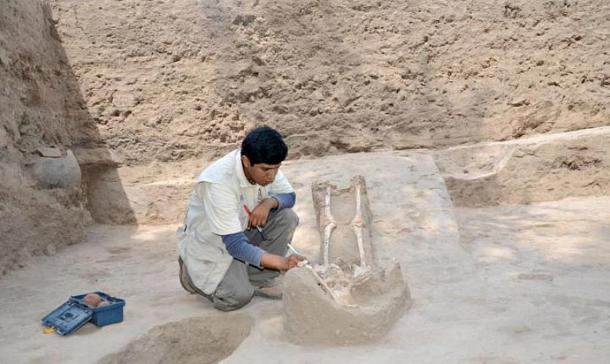 Archaeologist studying one of the female skeletons discovered in the Huaca Santa Rosa at Pucalá.