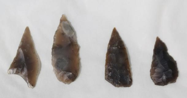 Arrowheads found at the site